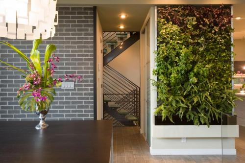 front-yard-cube-house-design-with-exposed-brick-wall-and-wall-mounted-plants-ideas